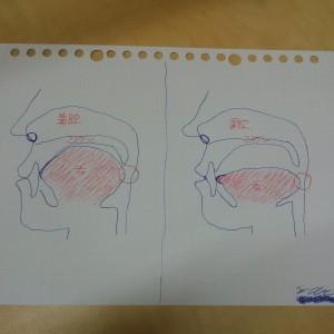舌の位置はどちらがよいでしょうか…